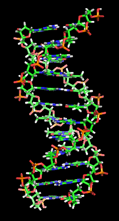 DNAhelix Changing Your DNA for Spiritual Transcendence?